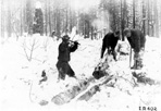 CCC Boys Splitting Cord Wood, Camp Siskiwit,  ca. 1938: [NVIC: 30-213], ISRO Archives.