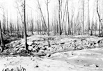 Area Burned Over, 1936: [NVIC: 30-028], ISRO Archives.